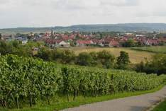 Weingut Sommer - Winery in Brackenheim