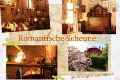 Romantische Scheune im Weingut Leo Sauer - Manor house in Eibelstadt - Exhibition