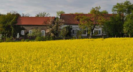 Hesperidengarten Wenzenbach