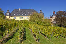 Weingut Schloss Vollrads as a wedding location, event location and meeting room in Oestrich-Winkel in the Rheingau near Wiesbaden and Mainz
