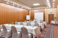 Hotel Wyndham Garden Donaueschinge - Conference hotel in Donaueschingen - Conference